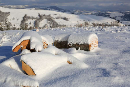 snow-covered wooden logs on mountain meadow in sunny day