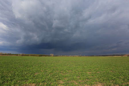 thunderstorm clouds in sky over spring green farming field