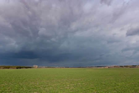 landscape with thunderstorm over green farming field in steppe Standard-Bild