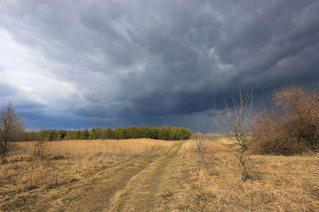 thunderstorm in spring stepe with heavy clouds in sky over dry grass field Standard-Bild