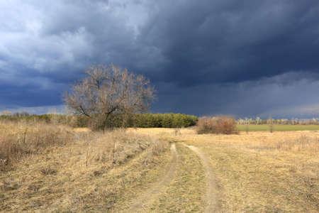 dirt road in steppe under thunderstorm clouds in sky Standard-Bild