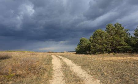thunderstorm sky over dirt road in steppe Standard-Bild