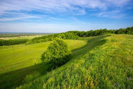 Green grassland on hill slope under spring sky Standard-Bild