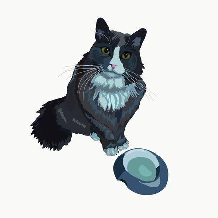 Cat asks for food vector illustration