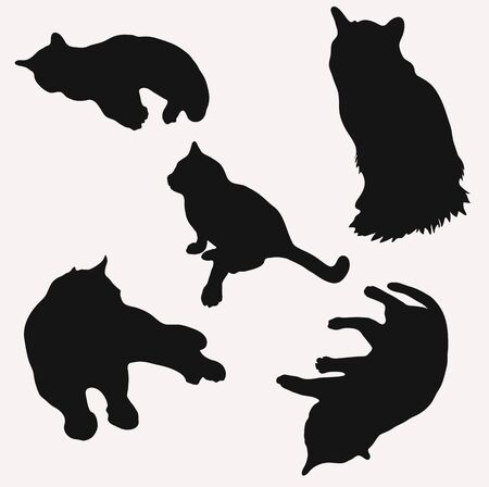 Silhouettes of cats in different poses vector illustration