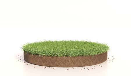 Zielona trawa na białym