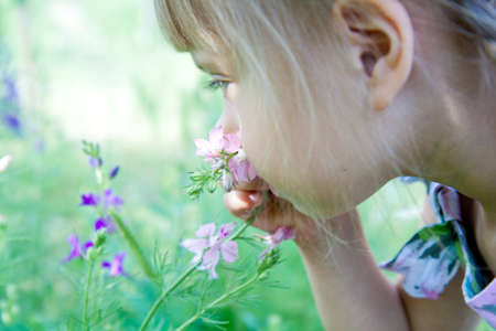 A little girl is smelling the blooming flowers. photo