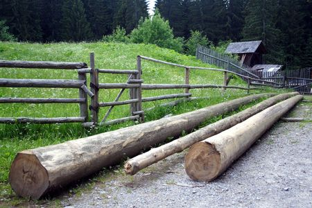 neatly stacked:  A logs neatly stacked near the fence Stock Photo