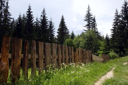 Rural landscape with wooden fence Stock Photo - 2822708