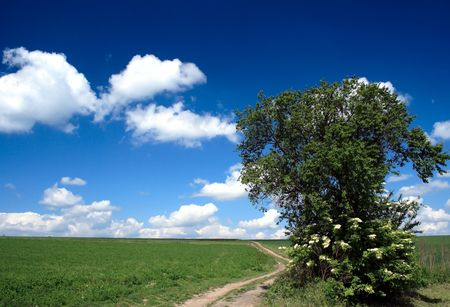 horizon with blue sky and white clouds Stock Photo - 2820170
