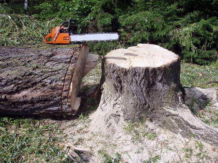 Inactieve chainsaw op een grote hout