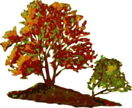 paint autumn trees on white background Vector