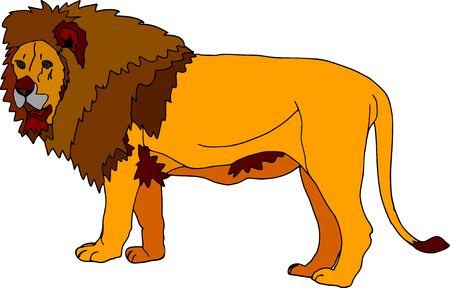 vector - big lion isolated on white background Stock Vector - 3699095