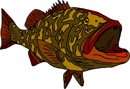 kokhalzen: vector - vis gag grouper geïsoleerd op witte achtergrond