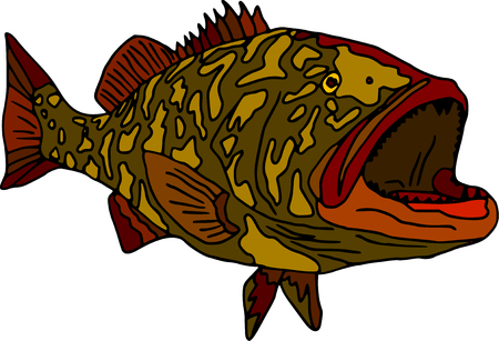 cernia: vettoriale - gag cernia pesce isolato su sfondo bianco Vettoriali