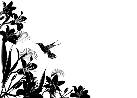 Tropical Flower background with hummingbird Vector