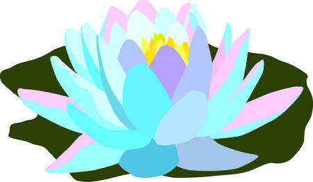 water lilly: vector - color waterlilly isolated on white background  Illustration