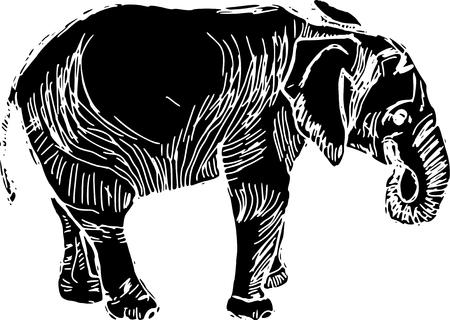 elephant nose: vector - linocut elephant isolated on white background