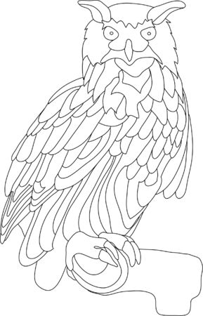 vector - owl isolated on background Vector