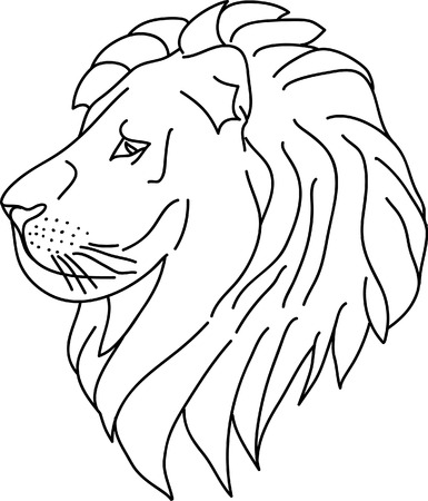 lion head  isolated on white background Stock Vector - 4984254