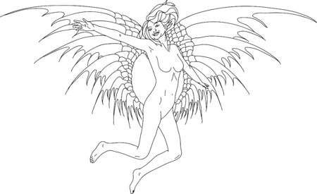 artistic nude: vector - angel women with wings Illustration