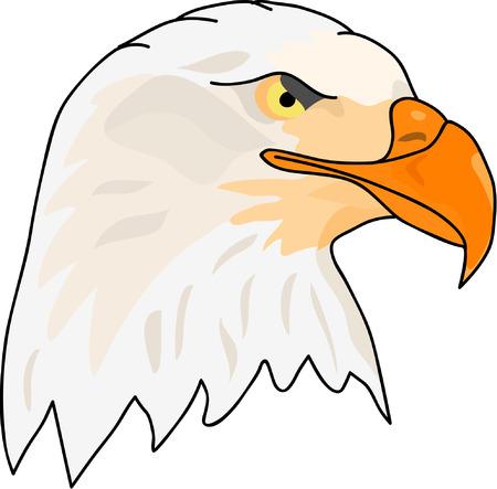black beak: vector - side face eagle head