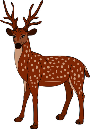vector - Deer isolated on background 矢量图像