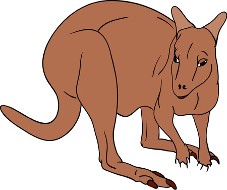 vector - brown kangaroo isolated on background Vector