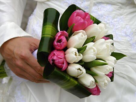 bridal - bouquet of tulip flowers Stock Photo - 5458971