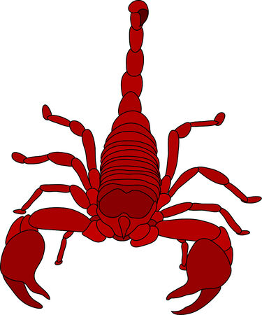 color scorpion isolated on white background Stock Vector - 5755200