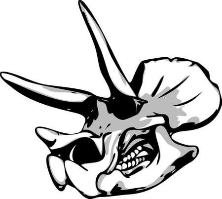 Dinosaur Skull isolated on background Vector