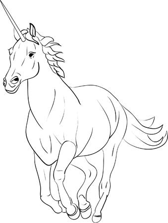 unicorn isolated on background Vector