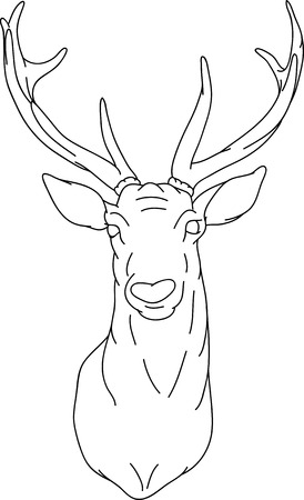 Deer - hand draw, isolated on background Vector