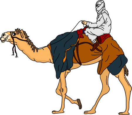 arabic desert: bedouin riding a camel,isolated on background