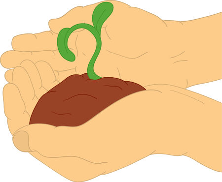 black seeds:  hands holding small green plant