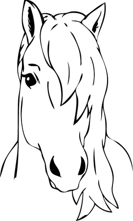 the contour: vector - portrait  - very haired horse head , isolated