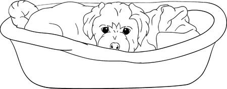 piccolo cucciolo sdraiato nella culla, isolato sullo sfondo