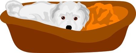 Vector - piccolo cucciolo sdraiato nella culla, isolato sullo sfondo