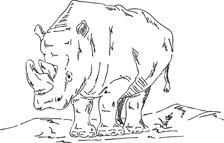 standing in line: vector - big rhino isolated on background