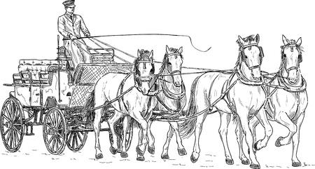 caballo caricatura: Carro del caballo, drenaje de la mano aislado en el fondo