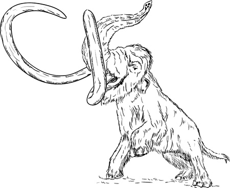 mammoth: vector - big mammoth attacking - isolated on background