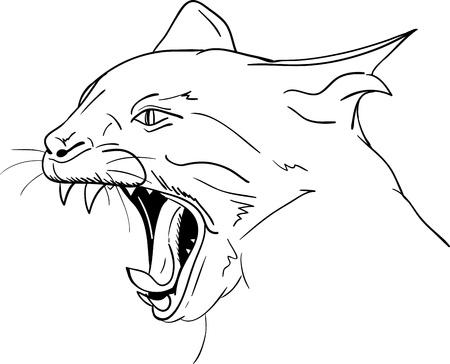 cat open: Cat head - open mouth