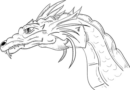 dragon head: vector - dragon head , isolated