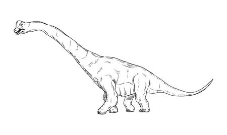 tiranosaurio rex: vector - dinosaurio, aislado en el fondo Vectores