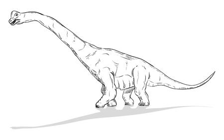 t rex: vector - dinosaur , isolated on background Illustration