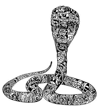 vector - snake cobra zentangle - isolated on background