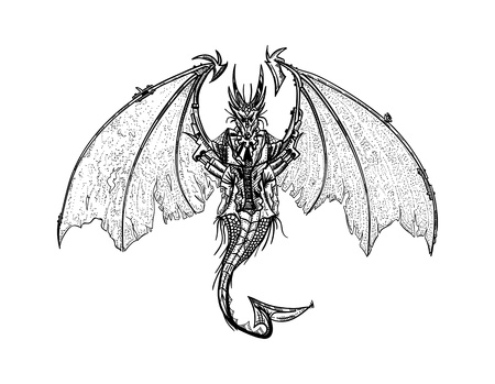 vector - isolated on background - Dragon