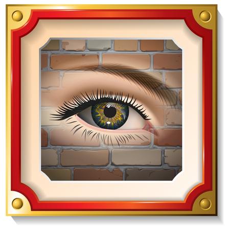 eye closeup: Female eye closeup in the frame on a brick wall. Vector