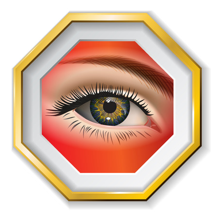 eye closeup: Female eye closeup in the frame. Vector