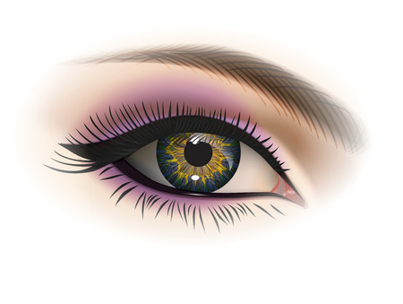 Female eye with makeup. Realistic vector image.